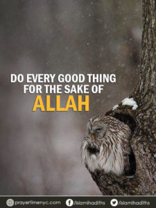 islamic quotes for facebook
