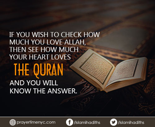 Quran Quotes for whatsapp